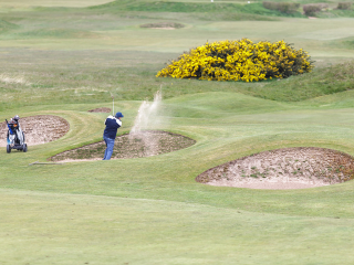 Play Golf in the North West